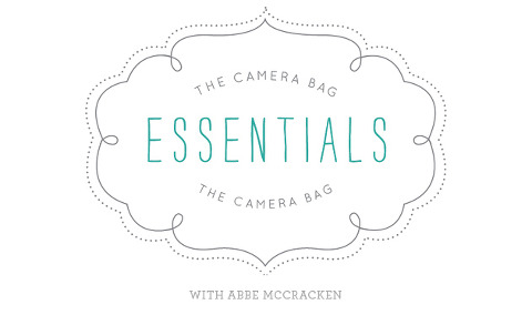 National Association of Professional Child Photographers feature on what's in Charlotte professional family photographer Abbe McCracken's camera bag