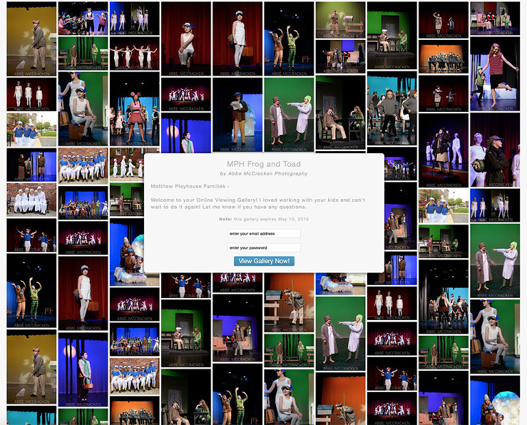 a sample gallery for Matthews Playhouse photography - performance pictures