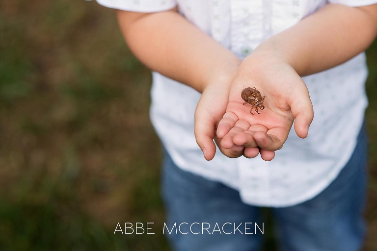 Summer family photography session - close up of a boy holding a cicada shell