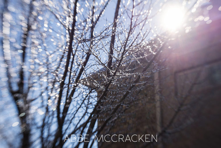Photo from ice storm in Charlotte NC January 2016