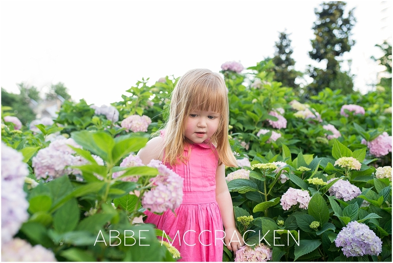 Picture of a young red headed girl walking through the hydrangeas in Romare Bearden Park, Charlotte NC